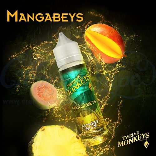 Mangabeys by Twelve Monkeys - 50ml Shortfill