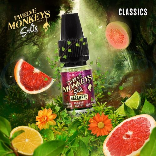 Harambae Nic Salt by Twelve Monkeys - 10ml