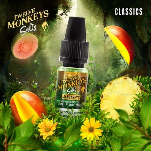 Mangabeys Nic Salt by Twelve Monkeys - 10ml